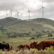 Uruguay un ejemplo en energía verde a nivel mundial
